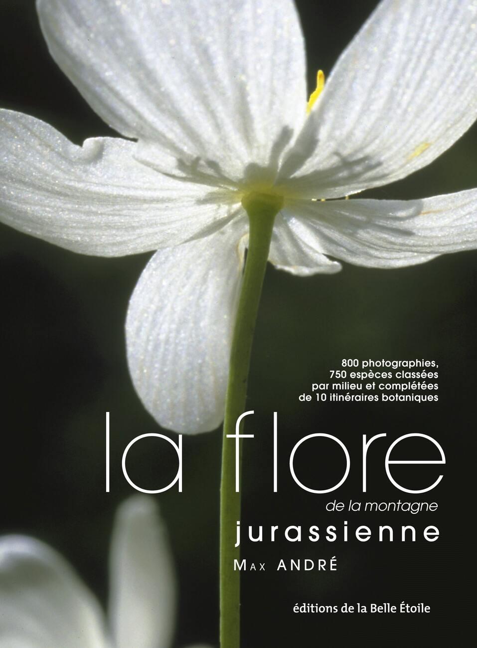 La flore de la montagne jurassienne