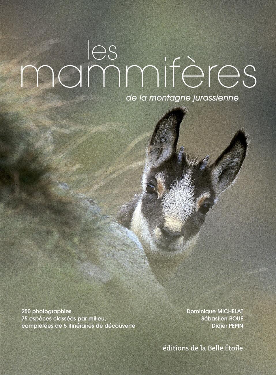 Les mammifères de la montagne jurassienne